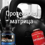 Протеинова матрица