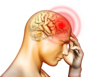 Приемът на хранителната добавка от 21st Century осигурява нормалната работа на нервната система.