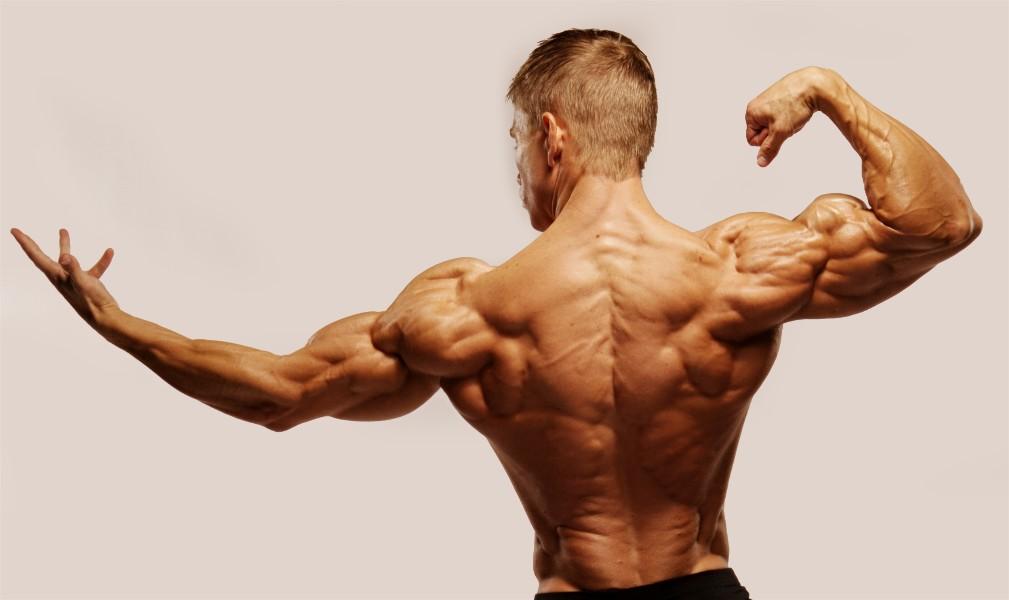 Athlete's Creatine Monohydrate Micronized повишава силата и енергията.