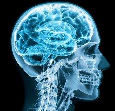 Цинкът стимулира мозъка - изберете цинк 25 мг 90 капсули на Батери.