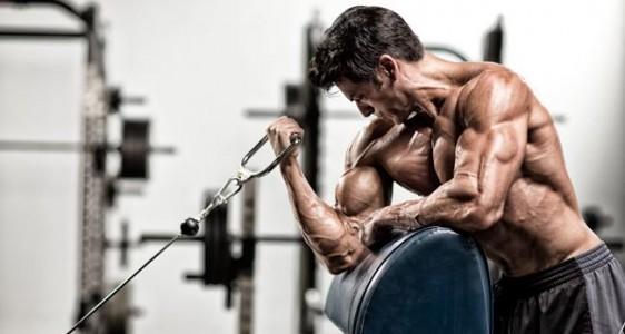Beef protein isolate (HYDROBEEF™) е хранителна добавка, чиято главна цел е да подобри спортните резултати, особено в областта на бодибилдинга.