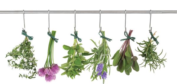 Cellucor P6 съдържа растителни екстракти за подобряване здравето на простатата.