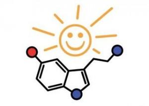 5-HTP Serotonin Booster 100 mg е продукт с отлично качество и топ цена в Protein.bg