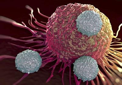 Best Fucoidan 70% на топ цена се бори с онкологичните патологии.