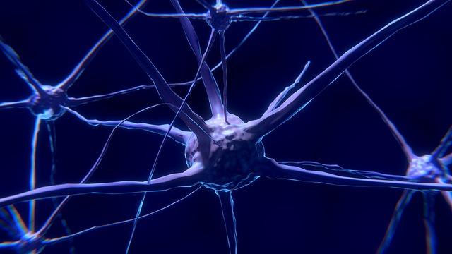 Doctor's Best Best Fully Active B12 защитава мозъка от увреждане.