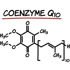 Коензим Q10 е незаменим при сърдечно-съдови заболявания, влияе положително на имунната система, предпазва тялото от вредните ефекти на свободните радикали.