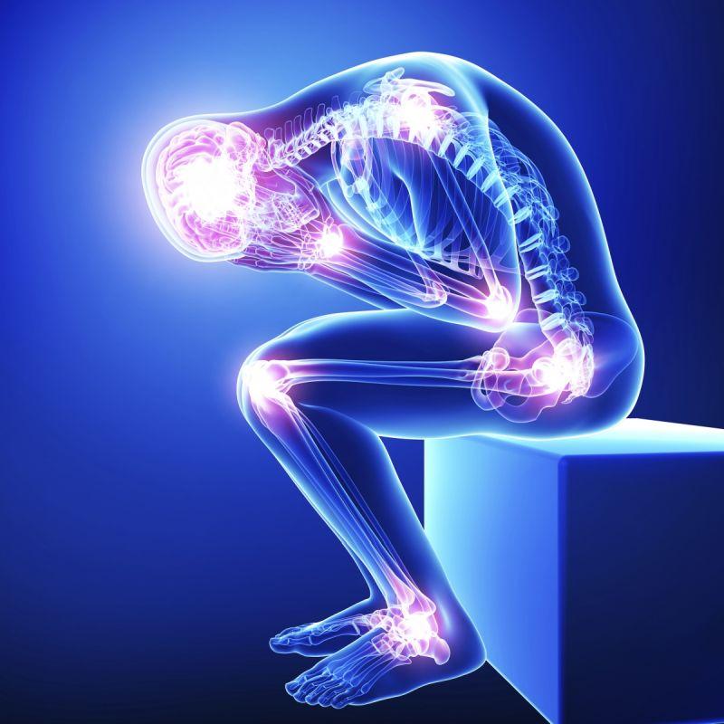 Продуктът Curcumin Phytosome Meriva 500 mg на капсули се препоръчва на хора, които искат да подобрят общото състояние на тялото си, тъй като добавката засяга здравето по различни начини и подкрепя основните механизми.