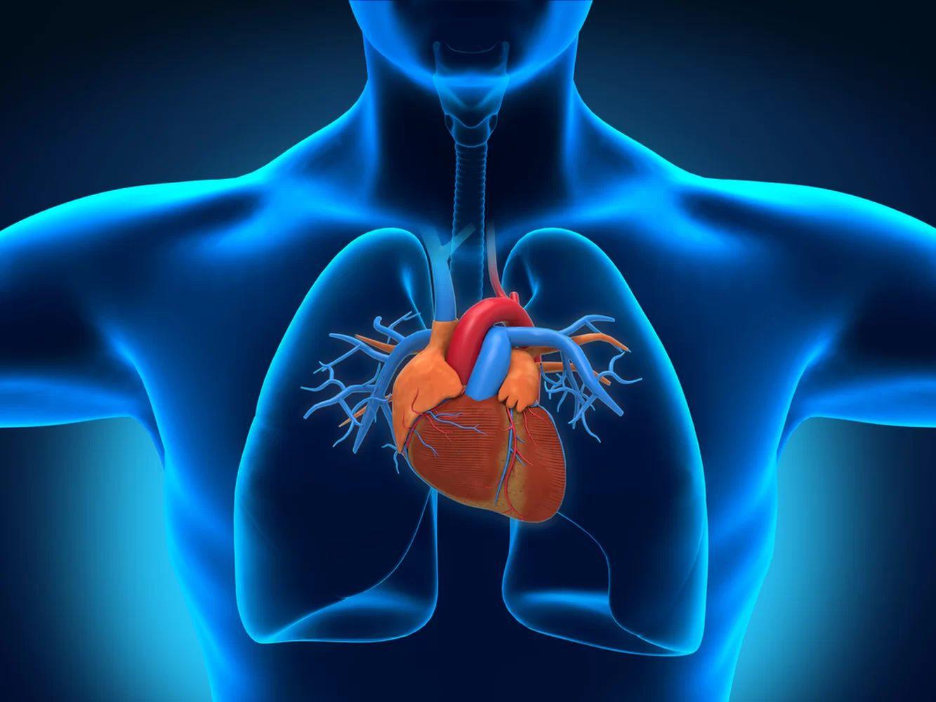 D-Ribose Powder 250 гр от Doctor`s Best на топ цена помага при сърдечно-съдови проблеми.