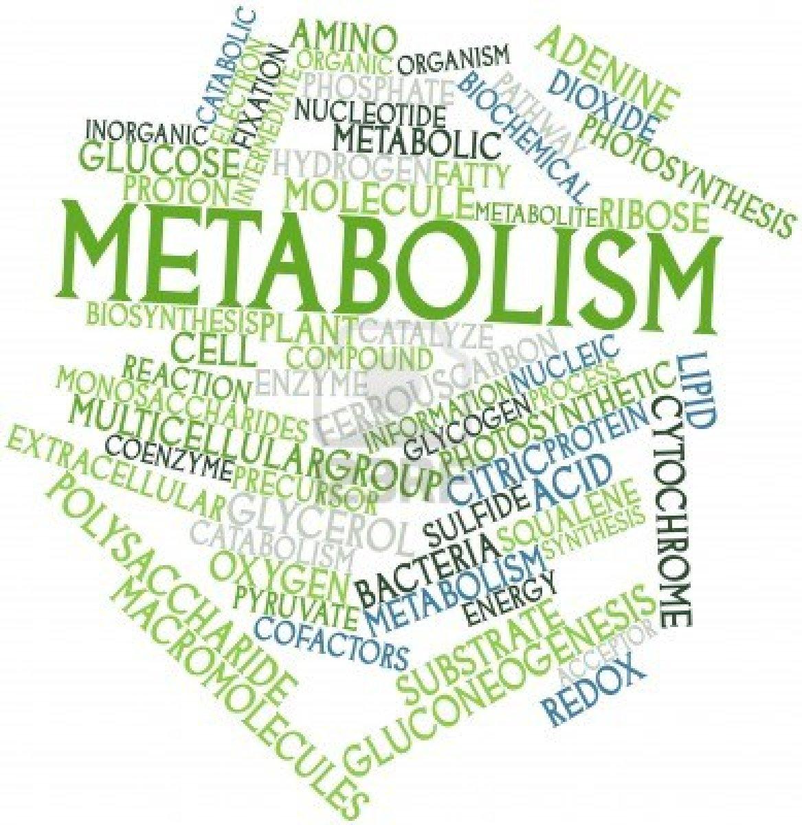 Digestive Enzymes съдържат 15 специфични храносмилателни ензима