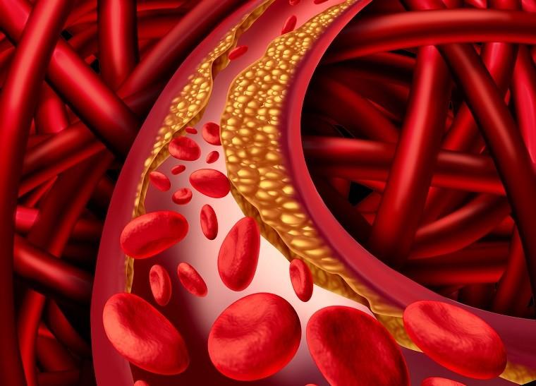 Natural Vitamin K2 45 mcg притежава уникална формула, която спомага за укрепването на сърдечно-съдовата система и здравината на костите, като активира специфични протеини (кофактор за активиране на остеокалцин), необходими за правилното използване на калция от тялото.