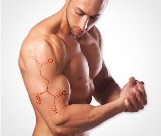 L-Glutamine (Л-глутамин) е една от условно незаменимите и жизненоважни аминокиселини, която стимулира имунната система и увеличава производството на хормоните.