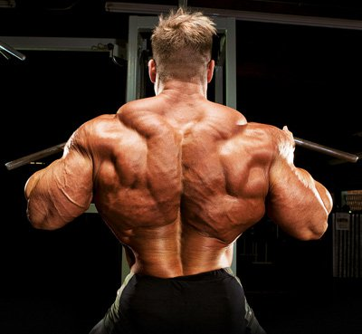 Чиста мускулна маса с гейнъра наJay Cutler Pure Muscle Mass.