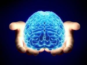 Специалистите от Muscle Pharm са създали съвременна креатинова матрица, която ще подобри нивата на креатин в организма ви, които от своя страна ще стимулират работата на мозъка.