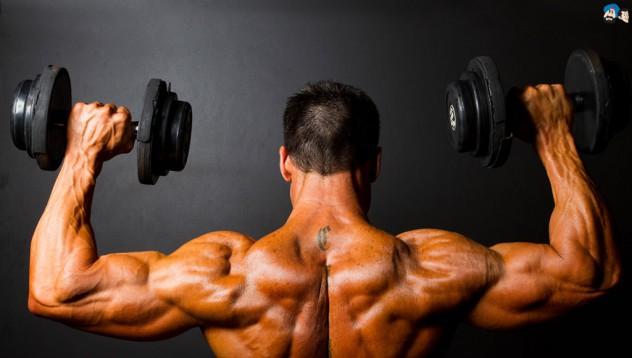 Гейнърът на Muscletech 100% Premium Mass Gainer ускорява качването на мускулна маса.