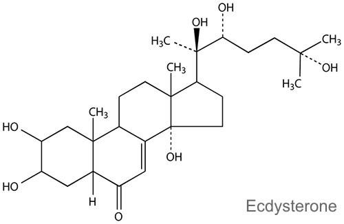 MyProtein ви предлага Beta Ecdysterone 60 капсули на страхотна цена и с бърза доставка повишава имунитета.
