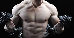 Creapure Creatine Monohydrate спомага за по-дълги тренировки и е с топ цена в Protein.bg