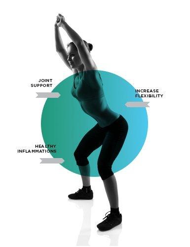 Glucosamine HCL & Chondroitin от MYPROTEIN е продукт, който подобрява здравето на вашите стави