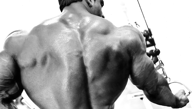 HMB от Myprotein предлага мощен стимул за синтеза на протеини и изграждане на мускули.