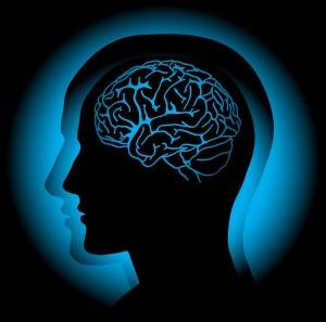 Myprotein L-Theanine подпомага състоянието на нервната система