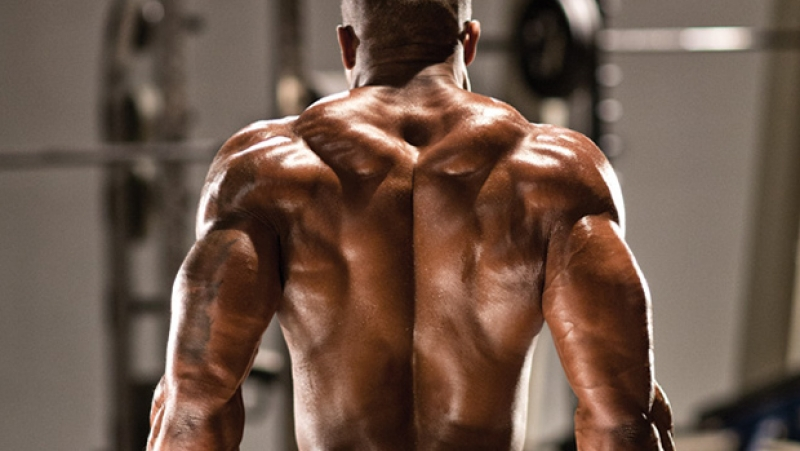 Milk Protein Smooth от Myprotein стимулира мускулния растеж и предпазва тъканите от катаболизъм.