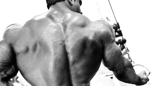 Mypre от Myprotein съдържа креатинова матрица и аминокиселини за ускорен мускулен растеж и повече сила.