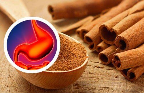 Cinnamon Extract 1000mg на Natrol помага срещу рак и подобрява краносмилането