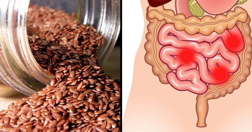 Flax Seed Oil 1000mg от Natrol подобрява храносмилането