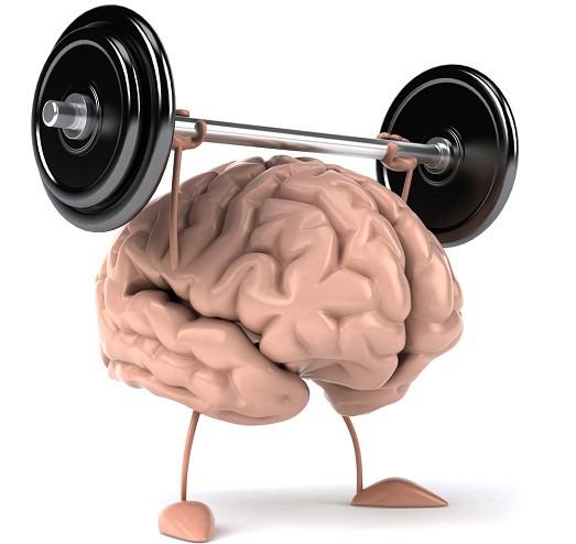 Соев лецитин от Natrol на топ цена защитава нервните влакна от увреждане и подпомага усвояването на витамините