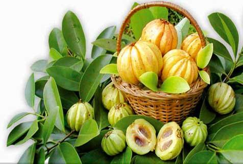 Now Foods Diet Support съдържа екстракт от Гарциния Камбоджа, зелен чай и форсколин.