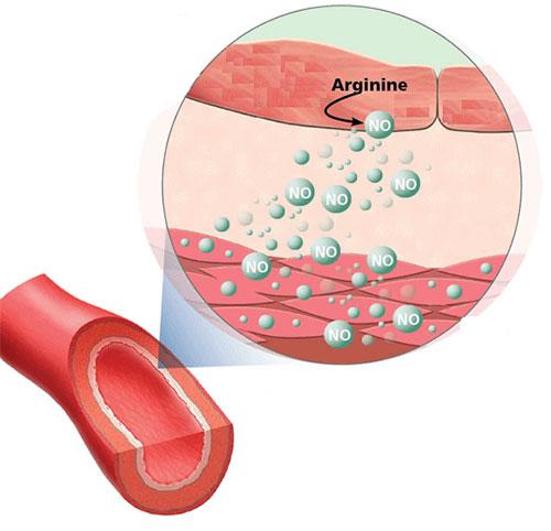 Now Foods Arginine повишава нивата на азотен оксид в организма.