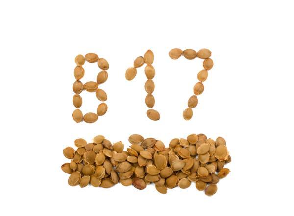 Vitamin B17 500mg PDM Pharmaceuticals е чист витамин В17, извлечен от кайсиеви ядки