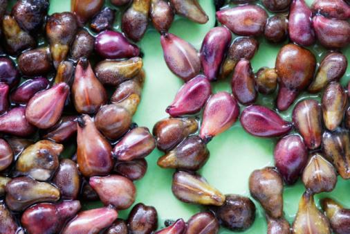 Prozis Foods Grape Seed Extract 100mg има силно антиоксидантно действие