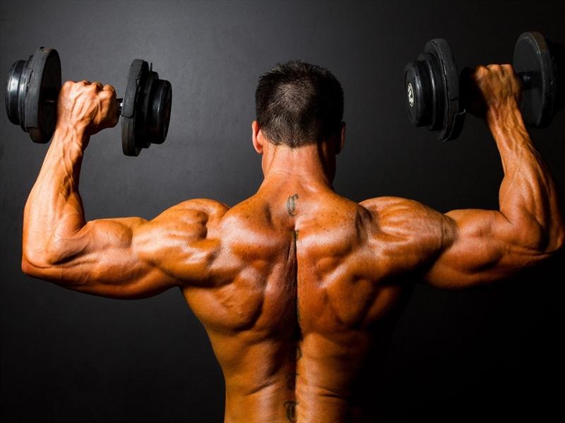 Protein Muscle Recall на QNT е суроватъчен протеин на прах на топ цена от Protein.bg