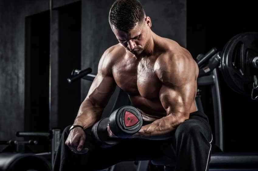 Animal Pump подпомага тренировките с енергия и сила