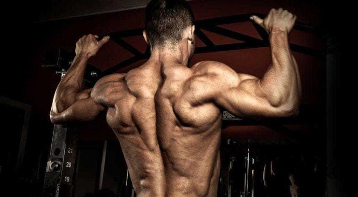 Universal Nutrition Animal Stak 21 packs увеличава мускулната маса и предпазва от катаболизъм