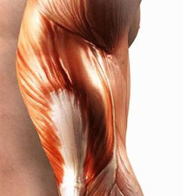 Universal Nutrition Animal Stak увеличава анаболитните хормони и повишава силите